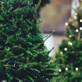 Endlich ist es soweit: unsere Looks für den Weihnachtsmarkt