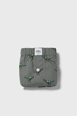 Zara Popelin-boxershorts mit dinosaurier-print