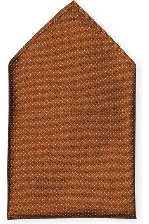 PAUL Herren Krawatten & Fliegen - Einstecktuch