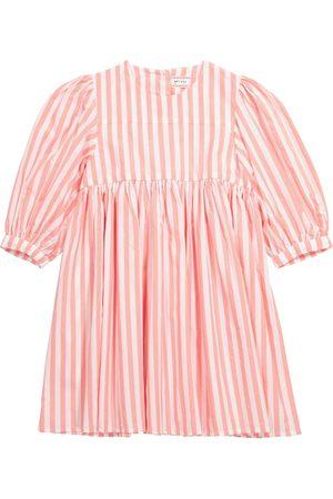 MORLEY Kleid Noa aus Baumwolle