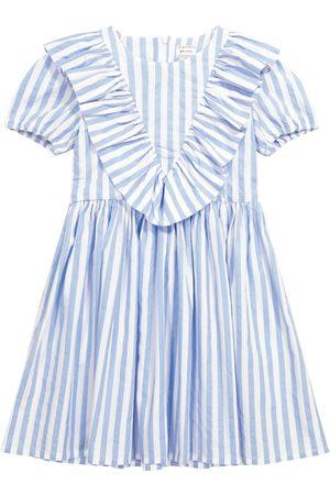 MORLEY Kleid Nova aus Baumwollpopeline