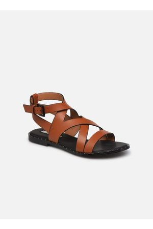 Pepe Jeans HAYES ROAD by