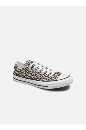 Converse Chuck Taylor All Star Archive Print Ox by