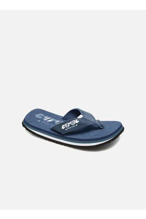 Cool shoe Original by