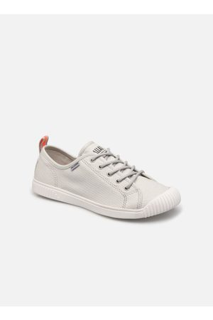 Palladium EASY LACE by