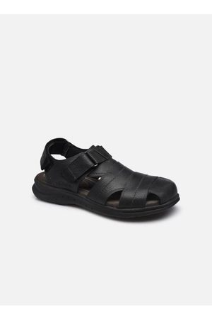 Clarks Hapsford Cove by