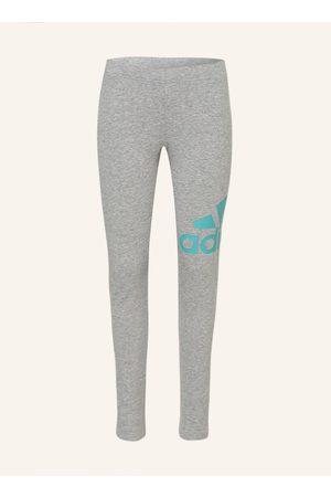 Adidas Damen Leggings & Treggings - Leggings grau