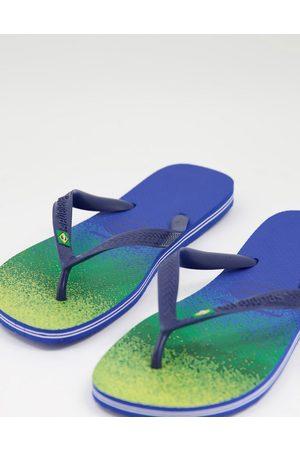 Havaianas Brasil fresh flip flops in ombre multi