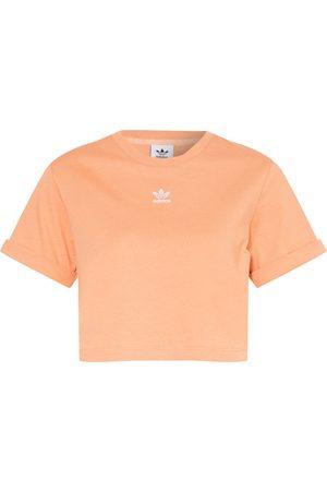 adidas Damen Shirts - Cropped-Shirt Adicolor Essentials