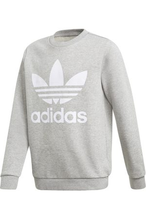 adidas Kinder-Sweatshirt TREFOIL CREW jungen