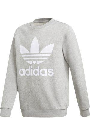 adidas Kinder-Sweatshirt TREFOIL CREW madchen