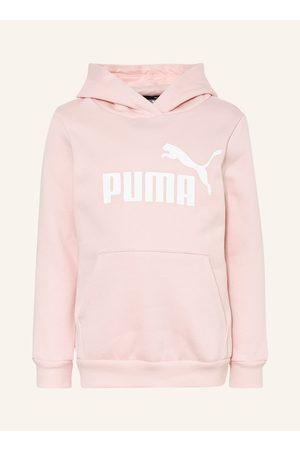 PUMA Damen Shirts - Hoddie rosa