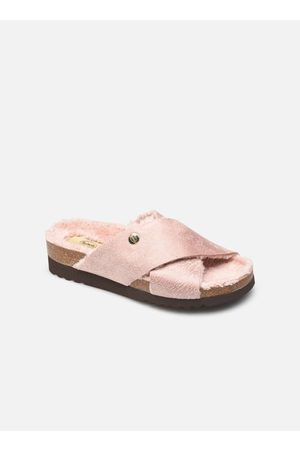 Scholl ALEXIS by